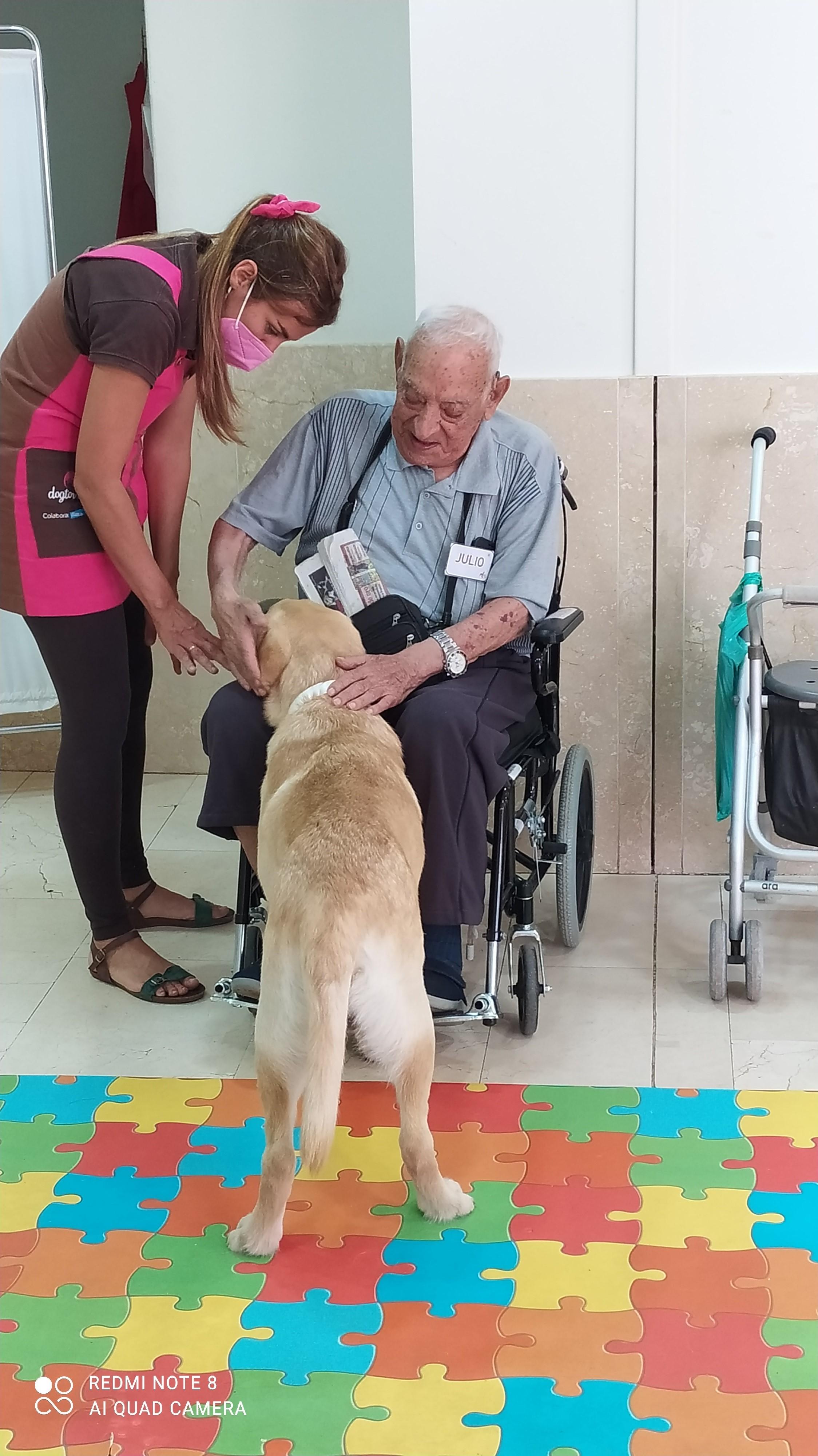 Terapia asistida con animales en Rosalba Sevilla la Nueva